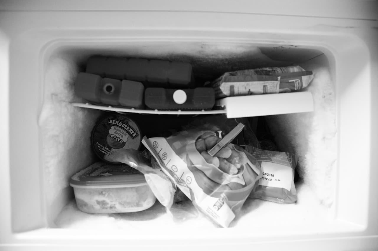 congelador con comida basura